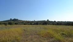 地皮 7700 m² 位于卡桑德拉(哈尔基季基州)