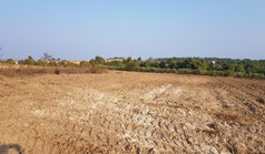 Land 11005 m² in Kassandra, Chalkidiki