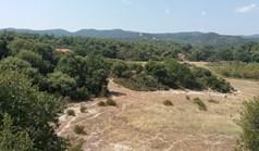 Land 50000 m² in Athos, Chalkidiki
