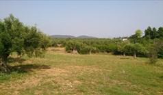 հողատարածք 4589 m² Խալկիդիկի-Սիթոնիայում