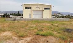Business 1000 m² à Athènes