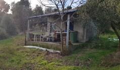 أرض 4000 m² في کاساندرا (هالكيديكي)