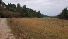 Land 10375 m² in Kassandra, Chalkidiki