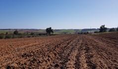زمین 11250 m² در کاساندرا (خالکیدیکی)