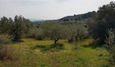 Zemljište 1800 m² na Sitoniji (Halkidiki)
