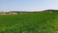 հողատարածք 11000 m² Խալկիդիկի-Կասսանդրայում