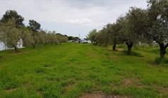 Land 1350 m² auf Athos (Chalkidiki)