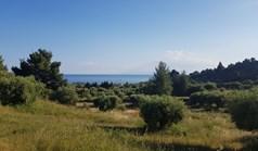 Land 4500 m² auf Kassandra (Chalkidiki)