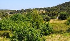 Zemljište 834 m² na Kasandri (Halkidiki)