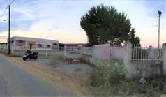 Geschaeft 1400 m² in Chalkidiki