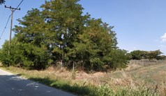 Land 4606 m² in the suburbs of Thessaloniki