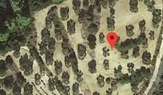 地皮 10000 m² 位于卡桑德拉(哈尔基季基州)