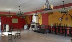Бизнес 180 m² в Атина