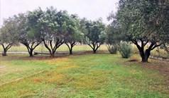 地皮 2000 m² 位于塞萨洛尼基