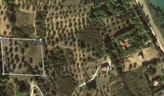 Γή 7000 τ.μ. στη Σιθωνία
