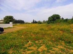 Land 164 m² in Loutraki