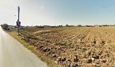 Земельна ділянка 10000 m² в Халкидіках