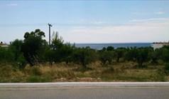 Terrain 5658 m² à Sithonia (Chalcidique)