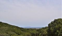 地皮 12000 m² 位于科夫岛