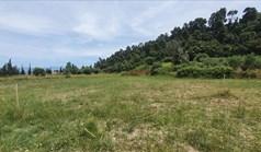 Zemljište 3928 m² na Kasandri (Halkidiki)