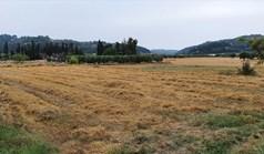 زمین 5000 m² در کاساندرا (خالکیدیکی)
