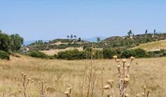 地皮 30000 m² 位于卡桑德拉(哈尔基季基州)