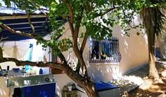 Wohnung 33 m² auf Kassandra (Chalkidiki)