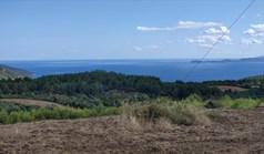 Land 17000 m² in Athos, Chalkidiki