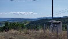 Land 100000 m² in Athos, Chalkidiki