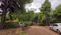 Земельный участок 3000 м² на Ситонии (Халкидики)