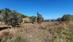 Land 4200 m² in Kassandra, Chalkidiki