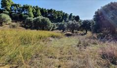 Zemljište 13600 m² na Kasandri (Halkidiki)