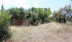 Земельный участок 12081 м² на Ситонии (Халкидики)