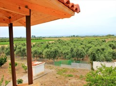 Detached house 280 m² in Western Peloponnese