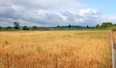 Land 4253 m² in Western Peloponnese