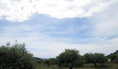 Zemljište 4300 m² na Tasosu