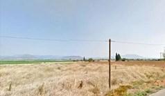أرض 6000 m² في وسط اليونان