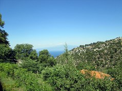Land 800 m² on the island of Thassos