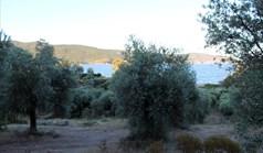 Land 6450 m² in Athos, Chalkidiki