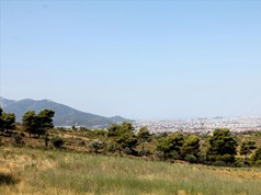 Land 22000 m² in Athens