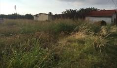 Terrain 6930 m² à Kassandra (Chalcidique)