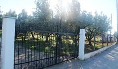 Парцел 22000 m² в Халкидики
