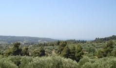 Zemljište 14300 m² na Kasandri (Halkidiki)