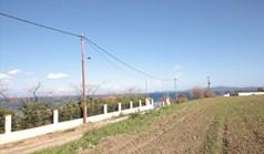Land 4200 m² auf Athos (Chalkidiki)