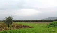 Zemljište 4890 m² na Sitoniji (Halkidiki)
